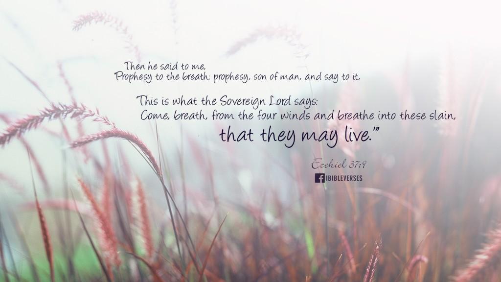 Ezek 37 prophesy to the breath